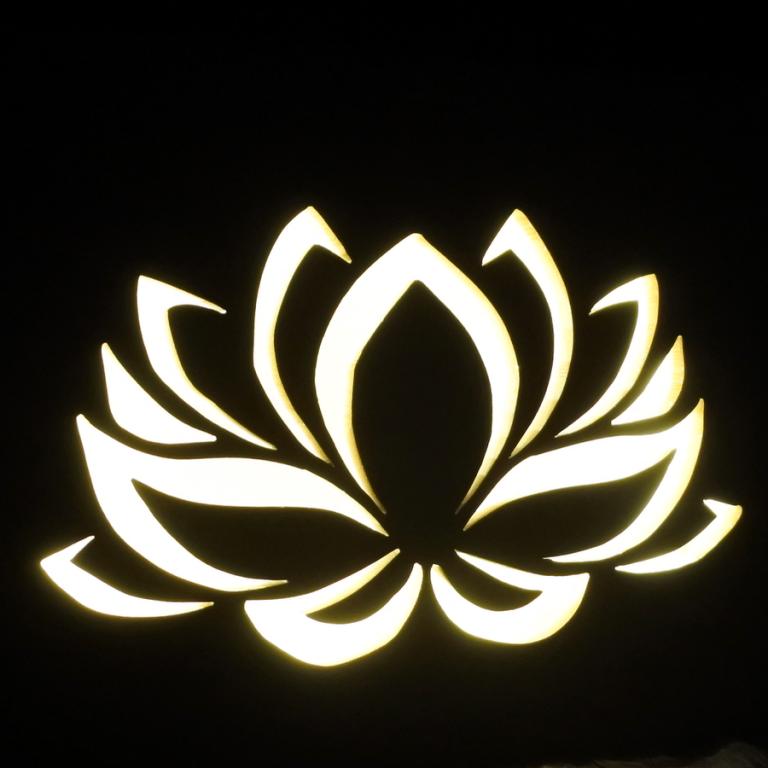 fleur lotus (5)